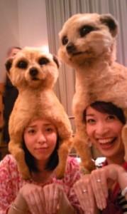 Yoshiko写真(フジTV CM) キッズダンスインストラクター、両国ハッピターン